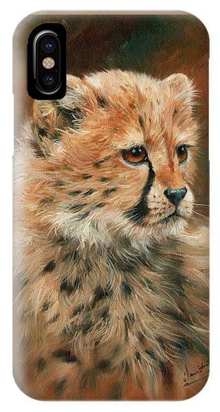 Cheetah iPhone Case - Cheetah Cub by David Stribbling