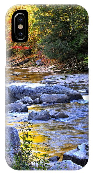 Fall Color Williams River IPhone Case