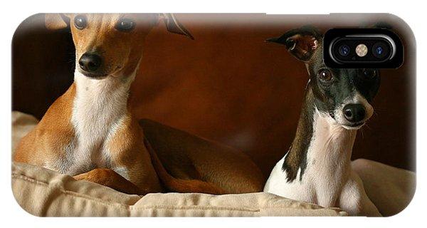 Italian Greyhounds IPhone Case