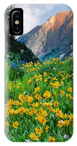 Wasatch Mountains IPhone Case