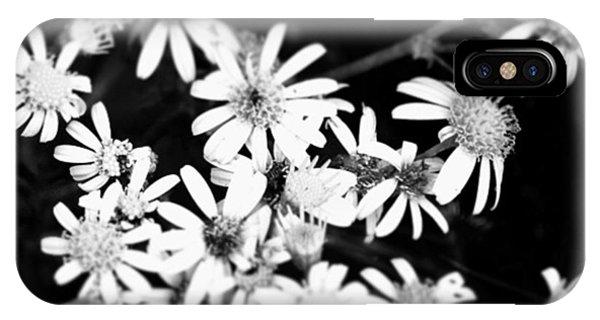 Petals iPhone Case - Instagram Photo by Jason Michael Roust