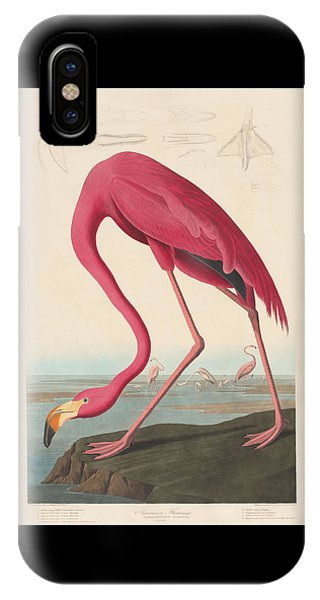 American Flamingo IPhone Case