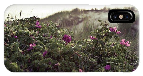 Rose Bush And Dunes IPhone Case