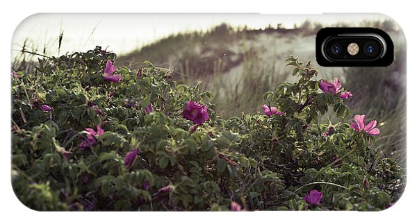 Rose Bush And Dunes IPhone Case