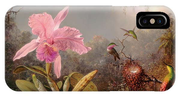 Humming Bird iPhone Case - Cattleya Orchid And Three Hummingbirds by Martin Johnson Heade