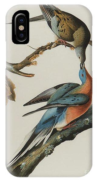 Audubon iPhone X Case - Passenger Pigeon by John James Audubon