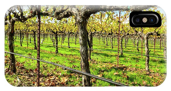 Rows Of Grapevines In Napa Valley California IPhone Case