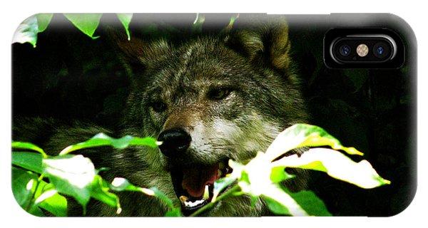 The Wild Wolve Group B Phone Case by Debra     Vatalaro