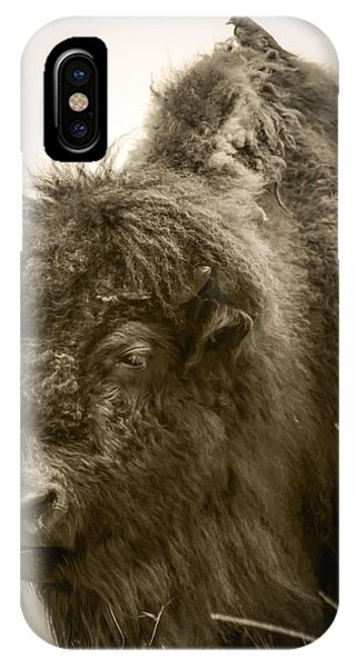 #6389 - The Traveler IPhone Case