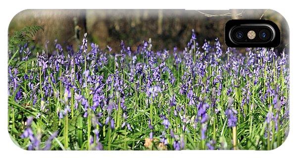 Bluebells At Banstead Wood Surrey Uk IPhone Case