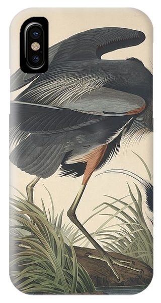 Ibis iPhone Case - Great Blue Heron by Dreyer Wildlife Print Collections