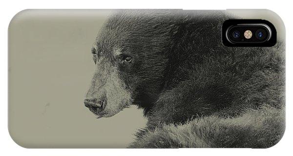 Black Bear  IPhone Case
