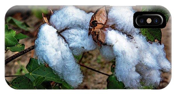 8 Bolls Of Cotton  IPhone Case