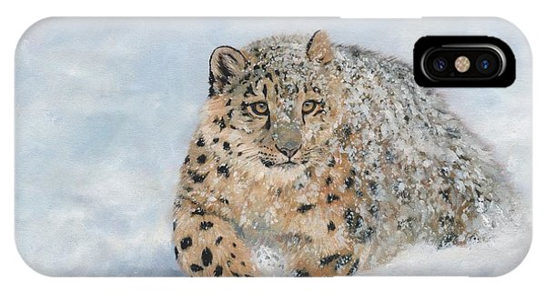 Snow Leopard iPhone Case - Snow Leopard by David Stribbling