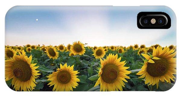 Sunflower Sunset IPhone Case