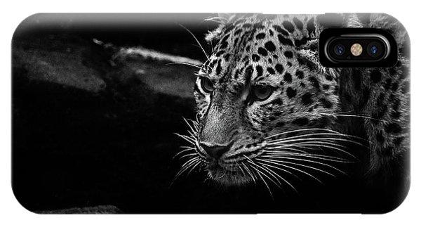 Snow Leopard iPhone Case - Amur Leopard by Martin Newman