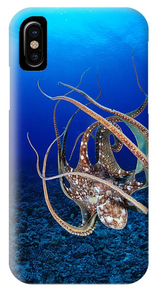 Hawaii, Day Octopus IPhone Case