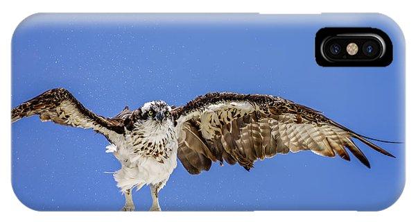 Osprey IPhone Case