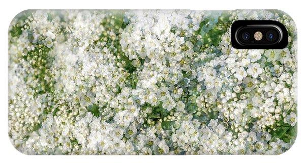 Spring Season - Inspired By Jackson Pollock IPhone Case