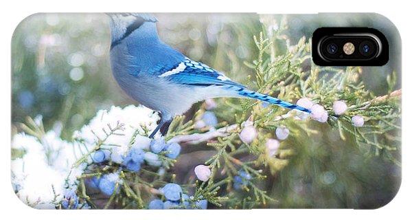 IPhone Case featuring the digital art Winter Birds by Jill Wellington