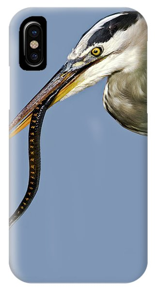 A Bad Snake Day IPhone Case