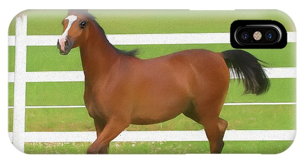 A Beautiful Arabian Filly In The Pasture. IPhone Case