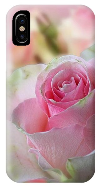 A Beautiful Rose IPhone Case