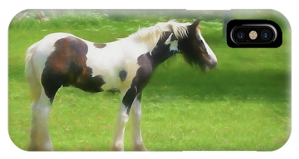 A Beautiful Young Gypsy Vanner Standing In The Pasture IPhone Case