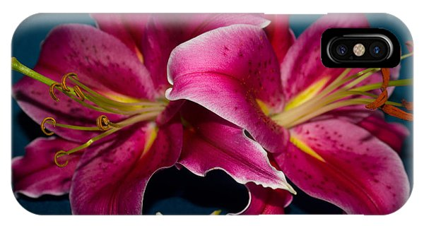 A Bunch Of Beauty Floral IPhone Case