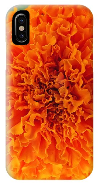 A Burst Of Orange IPhone Case