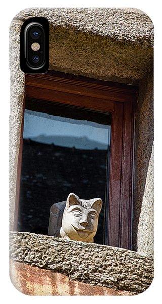 A Cat On Hot Bricks IPhone Case