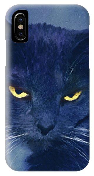 A Cat's Dark Night IPhone Case