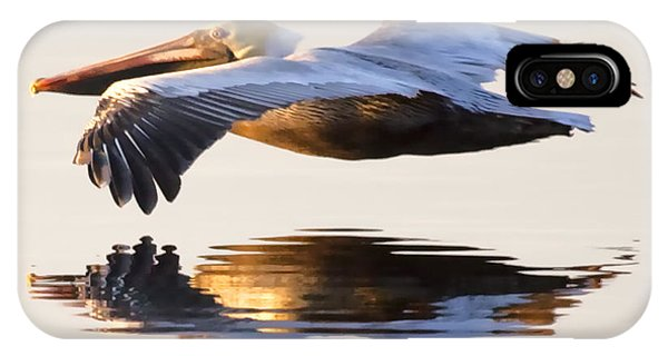 Pelican iPhone Case - A Closer Look by Janet Fikar