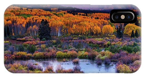 IPhone Case featuring the photograph A Colorado Fall Along Kebler Pass by John De Bord