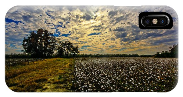A Cotton Field In November IPhone Case