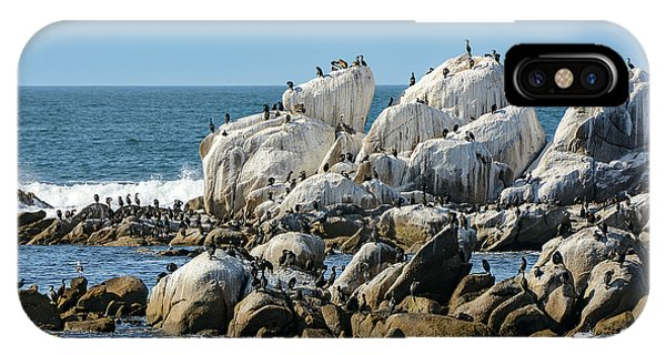 A Crowded Bird Rock IPhone Case