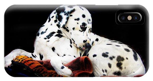 iPhone Case - A Dalmatian Prince by Blair Stuart