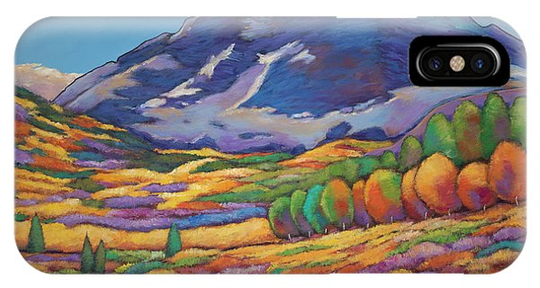 Realism iPhone Case - A Day In The Aspens by Johnathan Harris