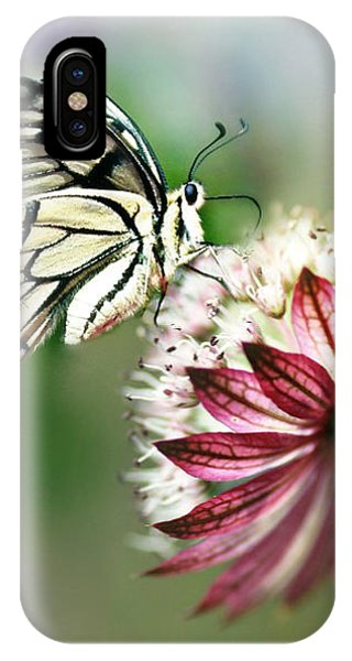 A Delicate Touch IPhone Case