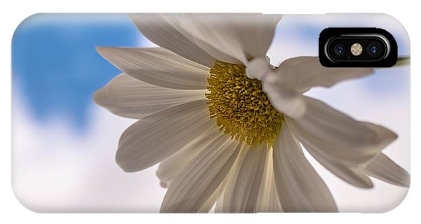 A Different Daisy IPhone Case