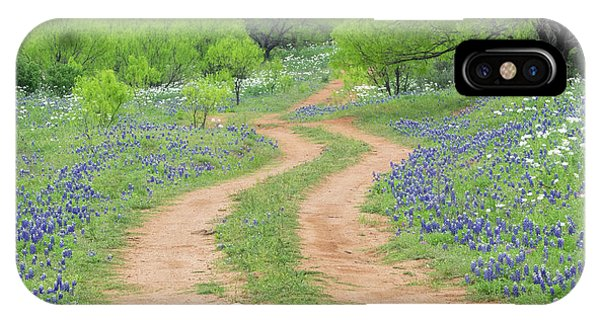 A Dirt Road Lined By Blue Bonnets Of Texas IPhone Case