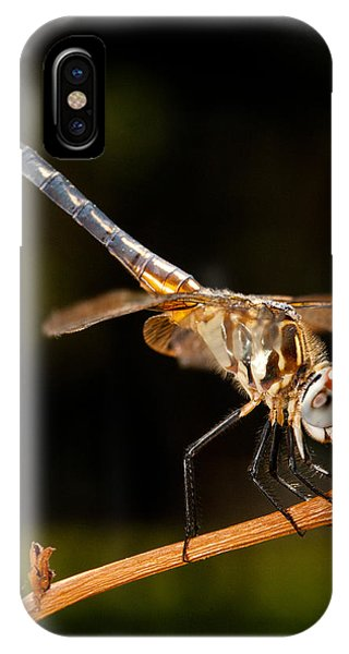 A Dragonfly IPhone Case