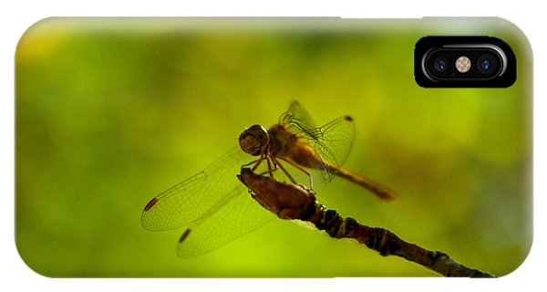 Little Things iPhone Case - A Dragonfly Smile by Jeff Swan