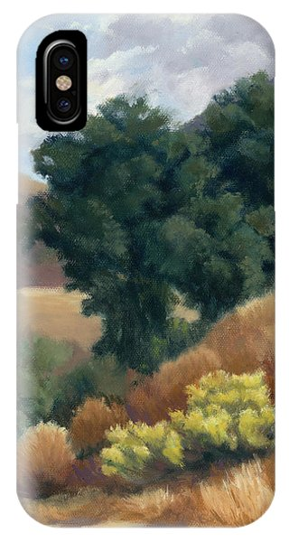 A Fall Day At Whitney Canyon IPhone Case