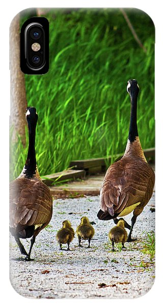 A Family Stroll IPhone Case