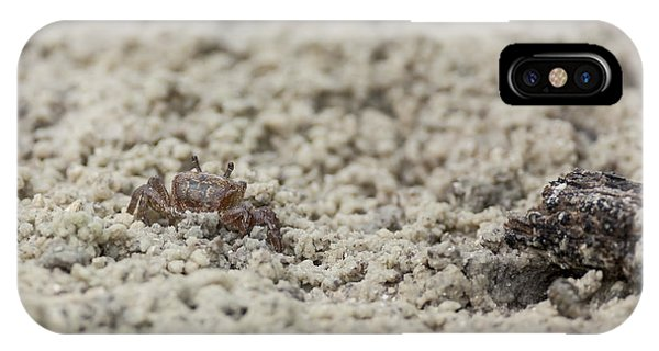 A Fiddler Crab In The Sand IPhone Case