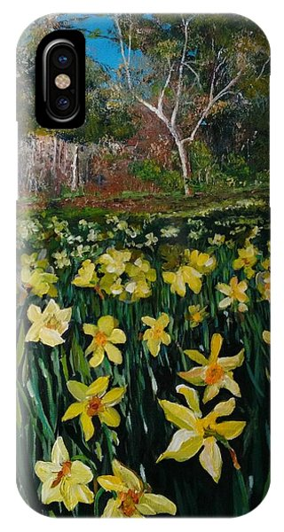 A Field Of Daffodils IPhone Case