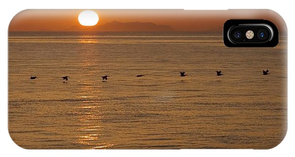 A Flock Of Brown Pelicans Flying Low IPhone Case