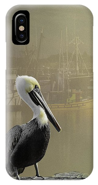 A Foggy Pelican Sunset IPhone Case
