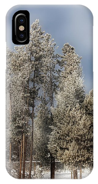 A Frosty Winter Morning IPhone Case